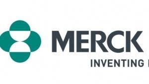 Das Logo des Pharmaherstellers Merck Sharpe und Dohme.