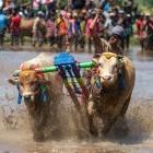 Linux: Weiterer Patch für Dirty-Cow-Sicherheitslücke