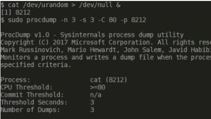 Procdump von Microsoft läuft auf Linux.
