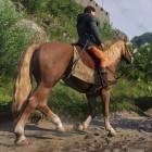 Warhorse Studios: Kingdom Come Deliverance ohne DRM erhältlich