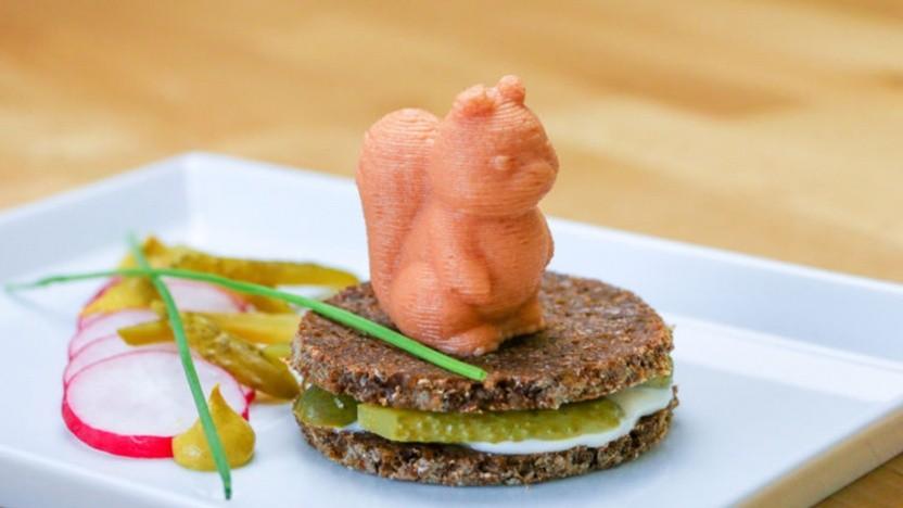 Ein Eichhörnchen aus mit dem 3D-Lebensmitteldrucker Procusini