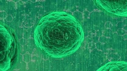 Die replizierende KI lehnt sich an die natürliche Vermehrung an.