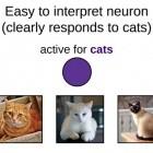 Deep Learning: Deepmind zerstört neuronale Netze, um sie zu verstehen
