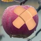 Apple: Erster Sicherheitspatch für MacOS High Sierra 10.13.4 kommt