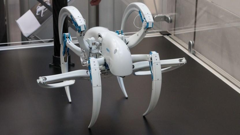 Bionic Wheel Bot: Bewegungsabläufe verstehen und nachbilden