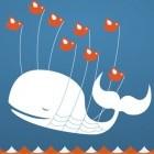 Sicherheit: Ein Lob für Twitter und Github
