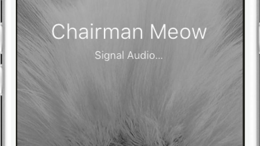 Signals Desktop-App hat ein Problem.