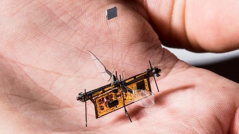Robofly: Energieversorgung über hochfrequente Funksignale erwogen