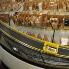 Amazon Deutschland: Lagerarbeiter erhalten über 5.000 Euro bei Kündigung