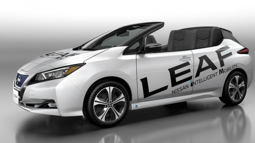 Leaf Open Car: Dach und B-Säulen entfernt