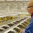 Beschäftigte: Amazon Deutschland vernichtet Retouren
