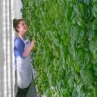 Plenty: Erfahrene Tesla-Ingenieure wechseln zu Bauernhof-Startup