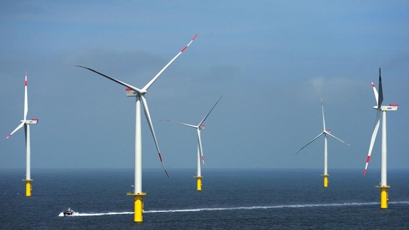 Offshore-Windpark Riffgat bei Borkum: reiches Nahrungsangebot für Robben