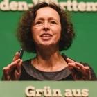 Breitbandgesellschaft: Grüne wollen Netzbetreiber zum Ausbau zwingen