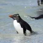 SoC: Huawei baut Warpdrive als Beschleuniger für Linux