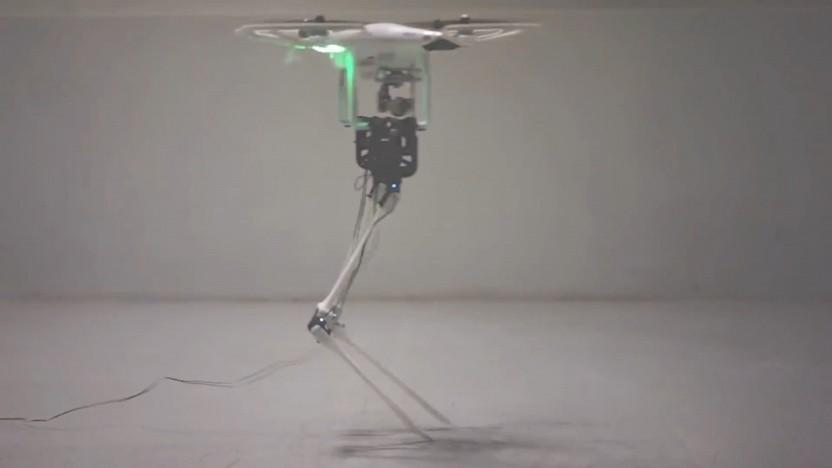 Aerial-Biped stakst wie ein Flamingo