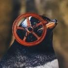 Steam Play: Valve macht mehr Spiele für Linux kompatibel