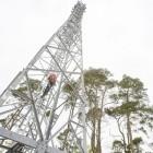 Mobilfunk: Vodafone-Kunden mit hoher Datennutzung in der Ferienzeit