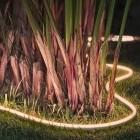Lichtverschmutzung: Was Philips Hue mit der Tierwelt im Garten macht