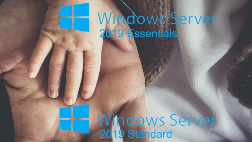 Windows Server 2019 Essentials ist die kleine Version.