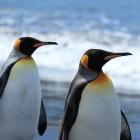ScoutFS: Linux bekommt ein archivierendes Dateisystem
