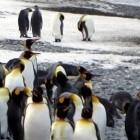 Linux-Kernel: Mit Machine Learning auf der Suche nach Bug-Fixes