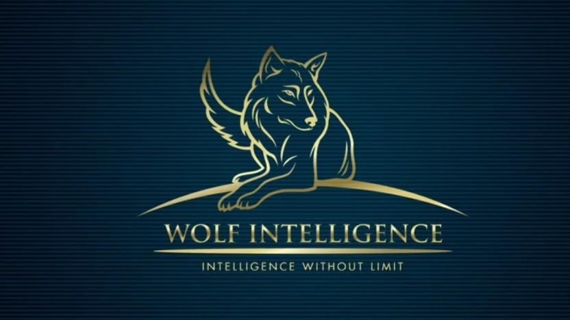 Daten von Wolf Intelligence waren öffentlich im Internet zugänglich.