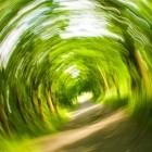 Reisekrankheit: Autonome Jaguar und Land Rover sollen Übelkeit verhindern