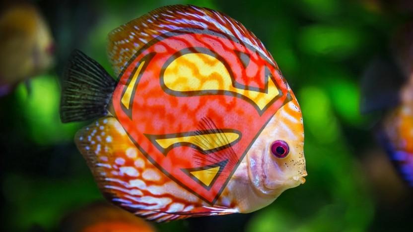 Der Superfish-Vorfall begleitet Lenovo schon fast drei Jahre.