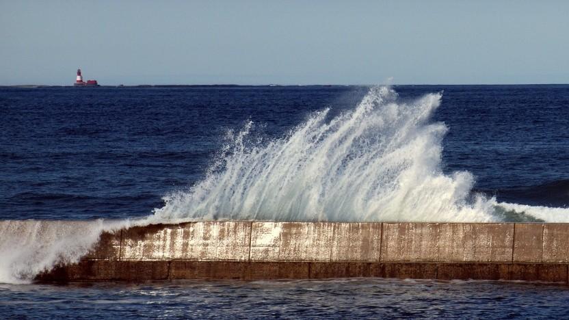 Ob das MIPS Open Program von Wave durchschlagenden Erfolg haben wird, muss sich zeigen.