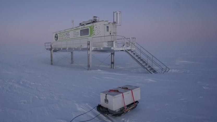 Container-Gewächshaus des DLR in der Antarktis: Grün macht glücklich
