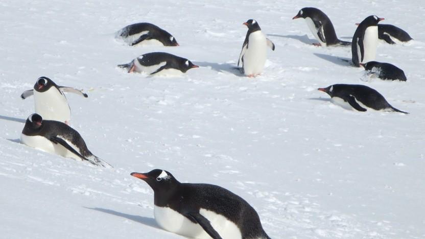 Die Freesync-Implementierung ist in Linux eingepflegt worden.