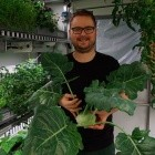 Eden ISS: Raumfahrt-Salat für Antarktis-Bewohner