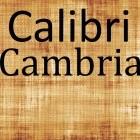 Calibri und Cambria: Aktuelle Schriftarten überführen Urkundenfälscher