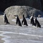 Drahtlos-Netzwerke: Linux-Kernel soll Treiber für Z-Wave und LoRa bekommen