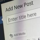 Wordpress-Plugin: Ehemaliger Mitarbeiter soll Webseite gehackt haben
