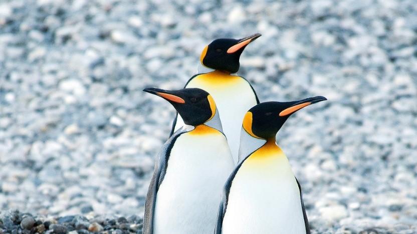 Alpine Linux setzt künftig wieder auf OpenSSL.