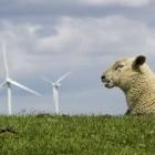 Ökostrom: Wie Norddeutschland die Energiewende vormacht