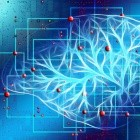 Begriffe, Architekturen, Produkte: Große Datenmengen in Echtzeit analysieren