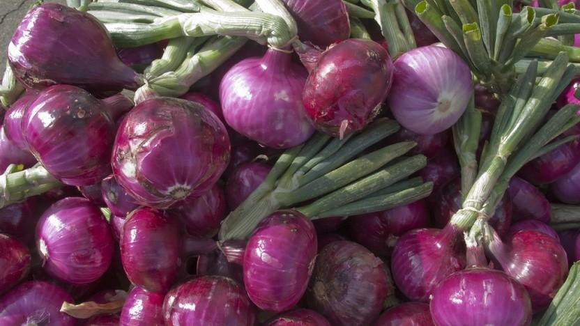 Onionshare soll das Teilen von Dateien über Tor vereinfachen.