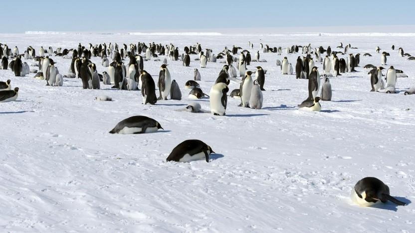 Linux soll in sicherheitskritischen Systemen genutzt werden können. Dafür gibt es nun das Elisa-Projekt.