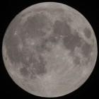 Artemis: Trump will Nasa-Budget für die Mondlandung aufstocken
