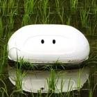 Nissan: Roboter hilft beim giftarmen Reisanbau