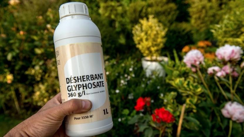 Ein Gutachten zu dem Herbizid Glyphosat durfte nicht veröffentlicht werden.