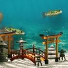Virtuelle Fische: Biotope simuliert ein Aquarium
