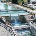 Wasserkraft: Strom aus dem Strom