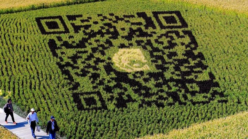 Ein QR-Code in einem Reisfeld in China