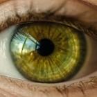 IT-Arbeit: Was fürs Auge
