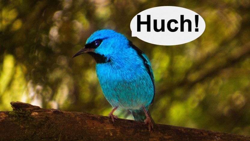 Der Twitter-Account von Jack Dorsey wurde gehackt.