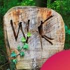 Umwelt: Grüne Energie aus der Toilette